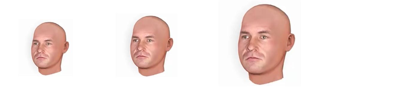 Create 3D heads with CrazyTalk 8 & 3D.sk Photos